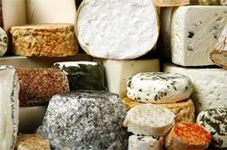 козий сыр