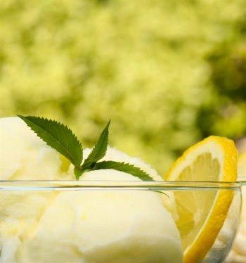 Мороженое лимонное от Зинаиды Неженцевой