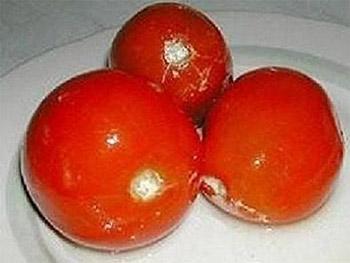 Соленые помидоры от Елены Молоховец