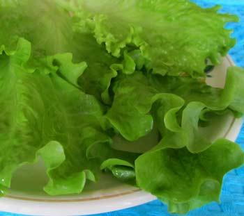 Суп овощной с листовым салатом