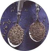 http://vkusninka.com//img/spices/zira.jpg