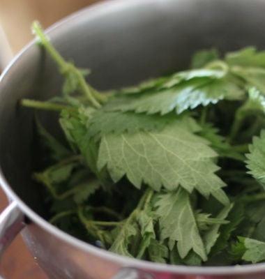 Салат из шпината и крапивы