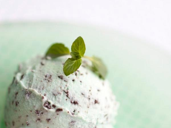 Мятное мороженое с шоколадной крошкой от Пети