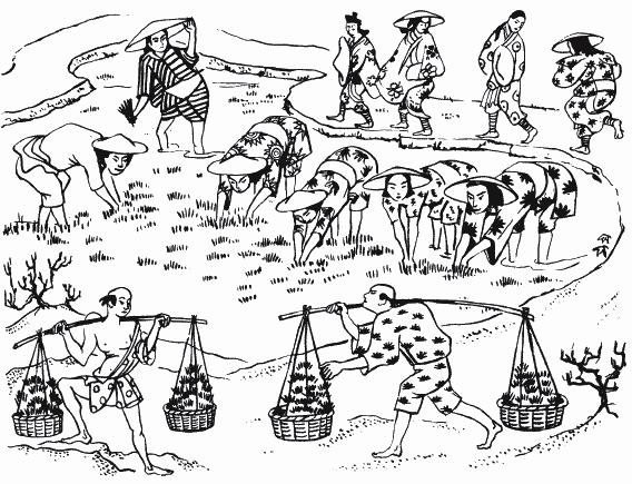 китайская деревня Хэмуду