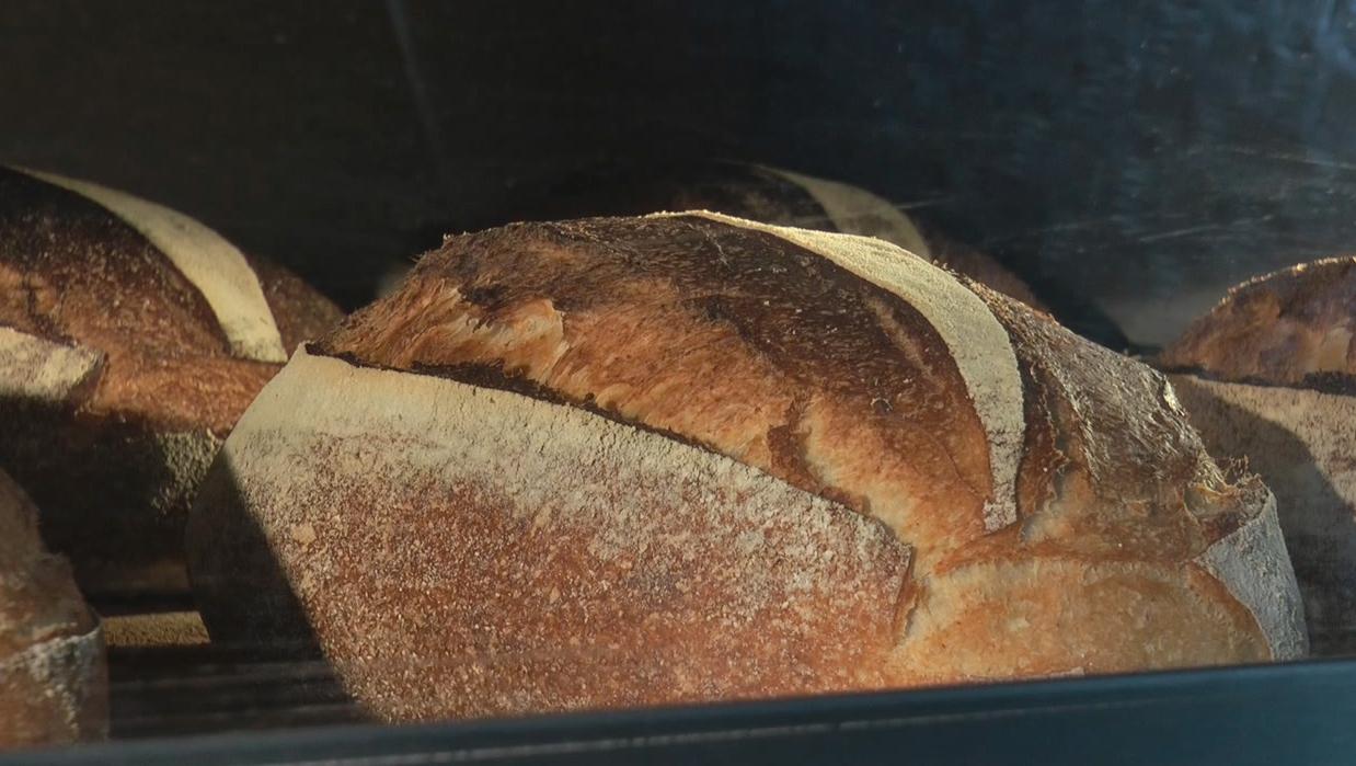 Фильм «Край хлеба». II часть